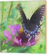 Fluttering Wings Of The Butterfly Wood Print