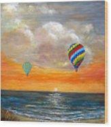 Fly Away 22 Wood Print