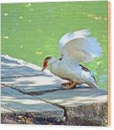 Fly Away Duck Wood Print