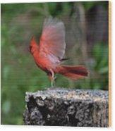 Fly Birds 318 Wood Print