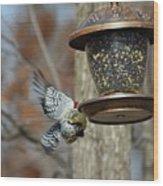 Fly Birds 326 Wood Print