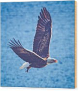 Fly By Eagle. 2 Of 3 Wood Print