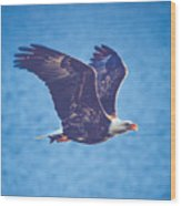 Fly By Eagle. 3 Of 3 Wood Print