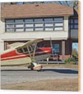Fly In To The Beaumont Hotel And Cafe Wood Print