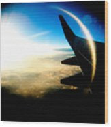 Fly Like A Dolphin Wood Print