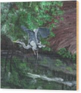 Fly Me Away To Little River Wood Print