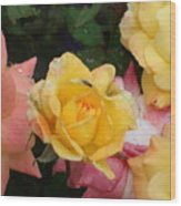 Fly On The Roses Wood Print by Terry  Wiley