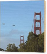 Fly Over Wood Print