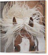 Flyin Bronc Wood Print