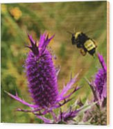 Flying Bee 2 Wood Print