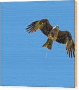 Flying Bird Shit Wood Print