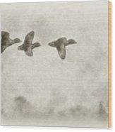 Flying Ducks Wood Print