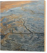 Flying From Fairbanks To Anchorage, Shooting In Airplane Wood Print