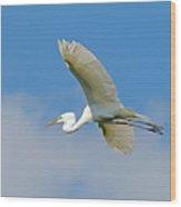 Flying Great Egret Wood Print