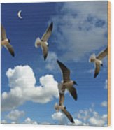 Flying High In The Clouds Wood Print