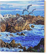 Flying High Over California Wood Print