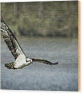 Flying Home Wood Print