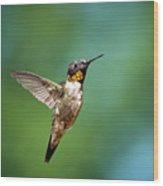Flying Hummingbird Wood Print