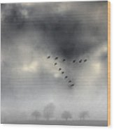 Flying Into A Gathering Storm Wood Print