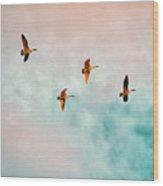 Flying Last Light Wood Print