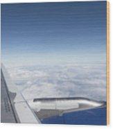 Flying Like A Bird Wood Print