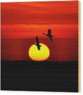 Flying North At Sunrise Wood Print