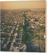 Flying Over Jersey City Wood Print