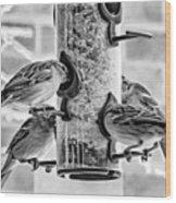 Flying Piglets Bw Wood Print