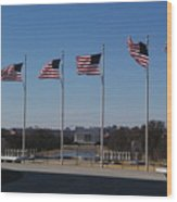 Flying Proudly Wood Print