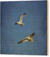 Flying Seagulls Wood Print