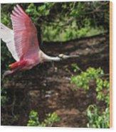 Flying Spoonbill Wood Print
