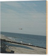 Flying The Beach Wood Print