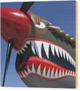 Flying Tiger Plane Wood Print