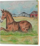 Foal In Grass Wood Print