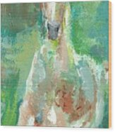 Foal  With Shades Of Green Wood Print