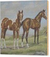 Foals In Pasture Wood Print
