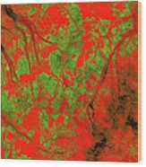 Focus Of Attention 21 Wood Print