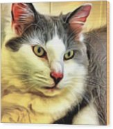 Focused Feline Wood Print