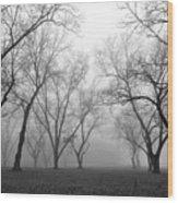 Fog 3 Wood Print by Beverly Hammond