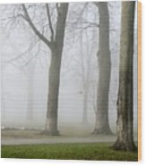Fog Amongst The Trees Wood Print