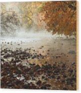 Fog And Color Wood Print