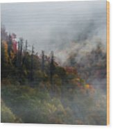 Fog And Color. Wood Print