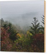 Fog And Drizzle. Wood Print by Itai Minovitz