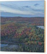 Fog And Fall Colors Wood Print