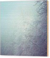 Fog And Ice Wood Print
