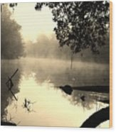 Fog And Light In Sepia Wood Print