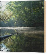 Fog And Reflection On Stream Wood Print