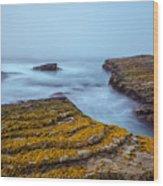 Fog And The Sea Wood Print