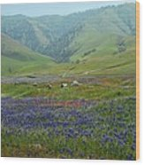 Fog And Wildflowers At Bear Mountain Wood Print