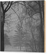 Fog At Metro Beach Wood Print